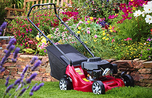 Lawn Mowers Somerset